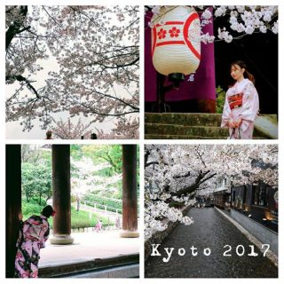 Thank you Kyoto, the blossoms were magic